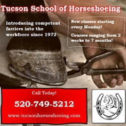 Tucson School of Horseshoeing